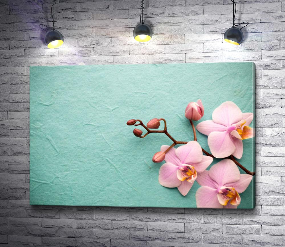 """Картина """"Сиреневая орхидея на мятном фоне"""""""