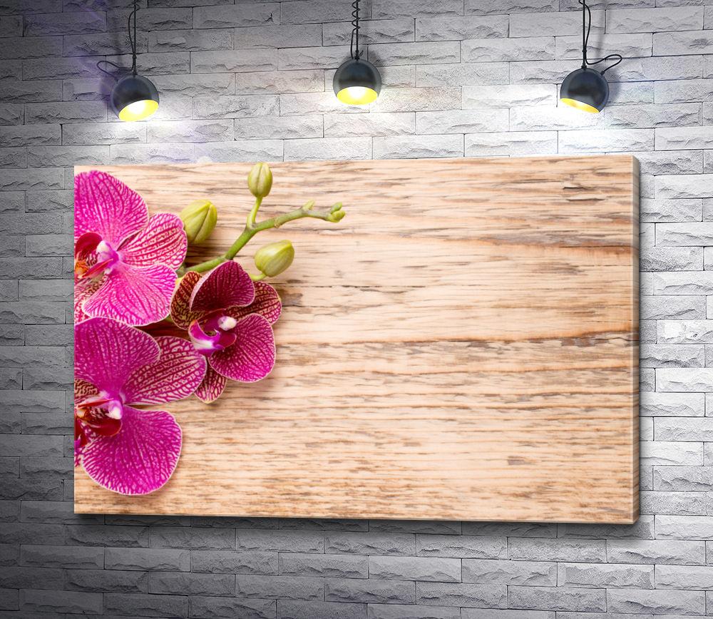 "Картина ""Лиловые орхидеи на фоне дерева"""