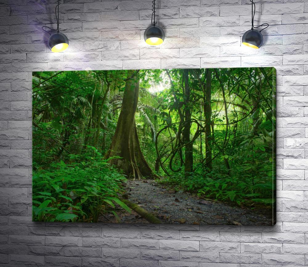 """Картина """"Непроходимые джунгли"""""""