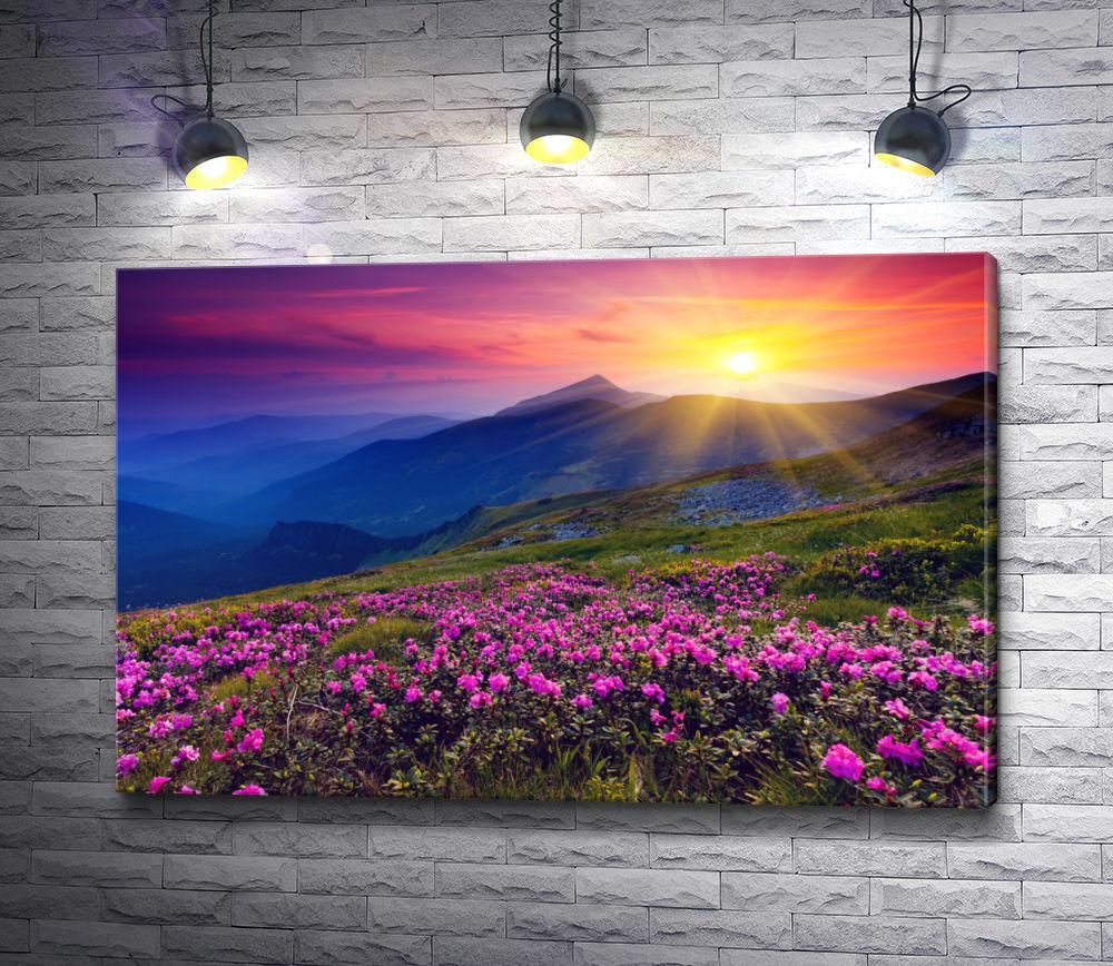 """Картина """"Рассвет над горной равниной с цветами"""""""