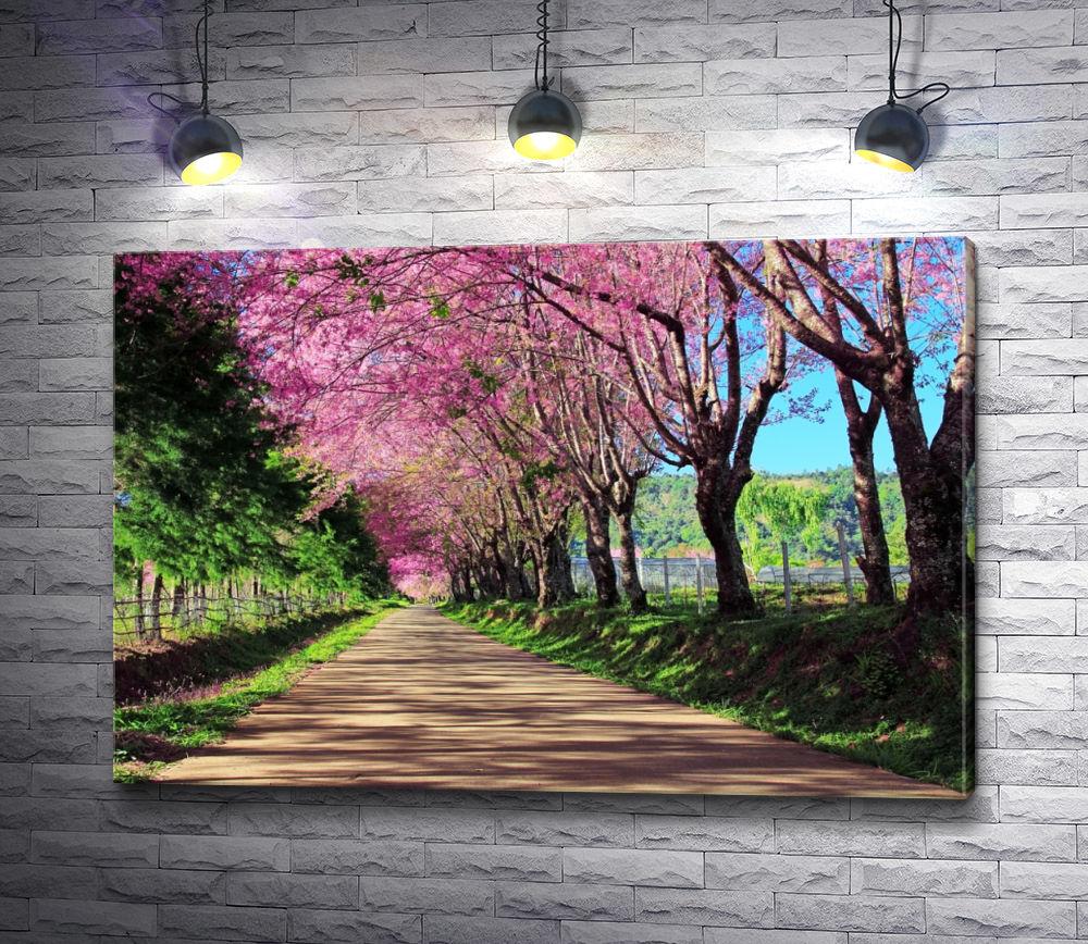 """Картина """"Тропинка для прогулок в Чианг Май, Таиланд"""""""