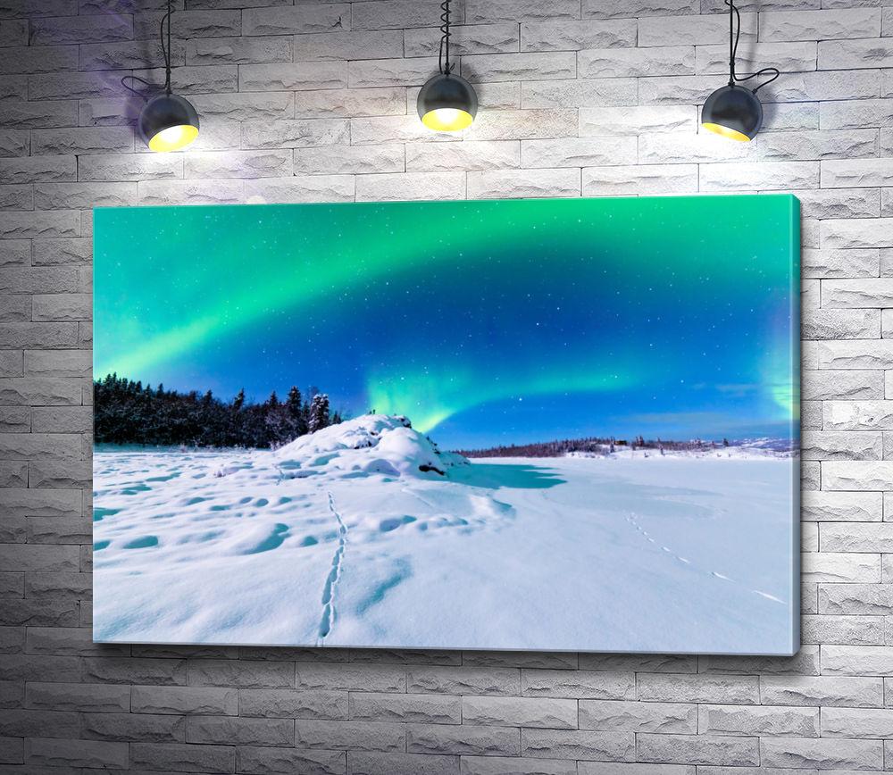 """Картина """"Полярное сияние над снежным простором"""""""