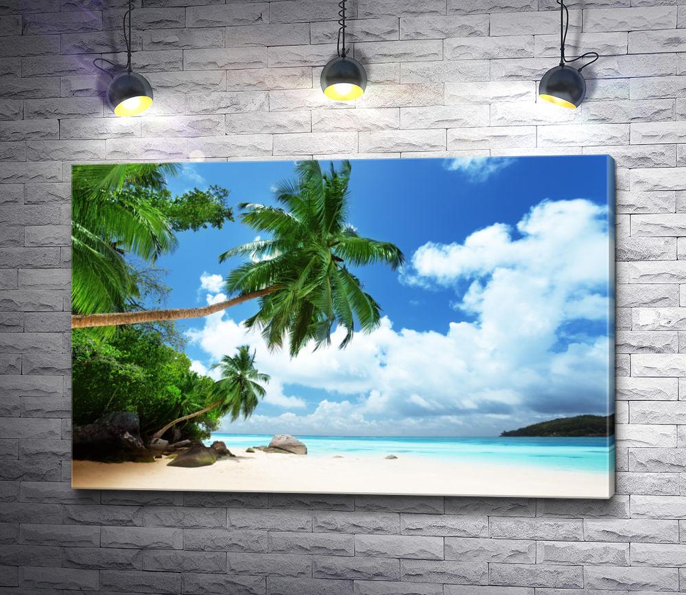 """Картина """"Тропическое побережье в облаках"""""""