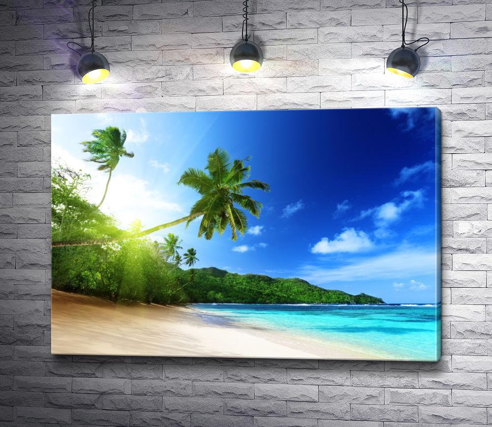 """Картина """"Побережье океана в тропиках с пальмами"""""""