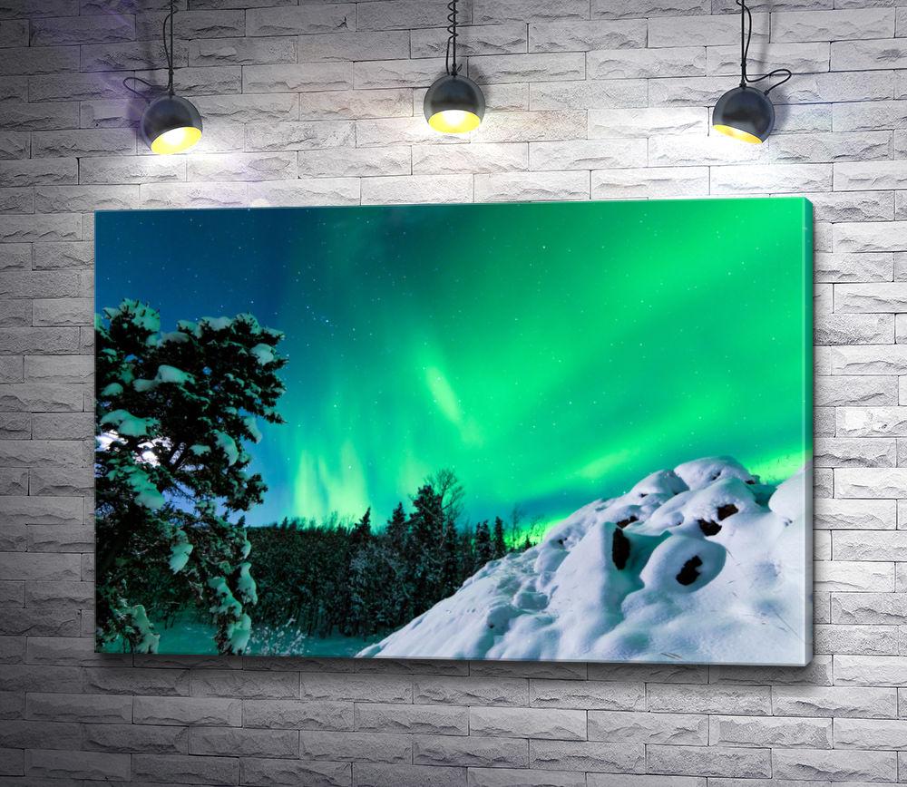 """Картина """"Северное сияние Аляски"""""""
