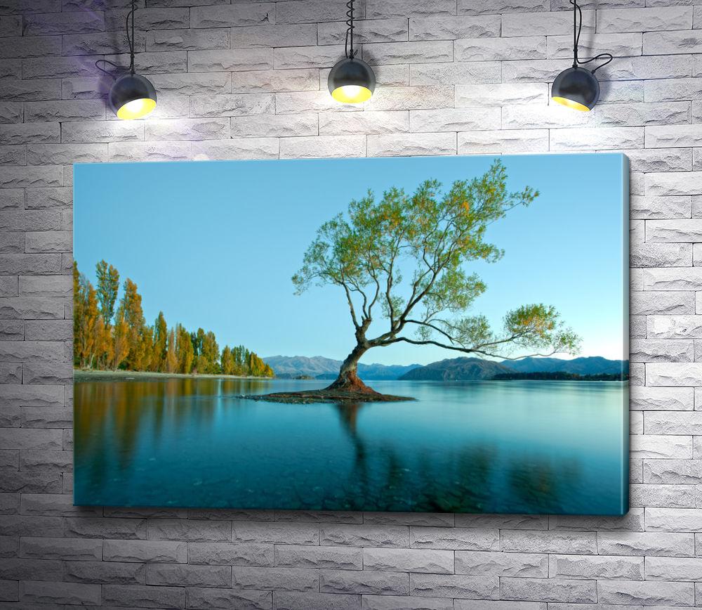 """Картина """"Дерево на зеркальном озере Уанака, Новая Зеландия"""""""