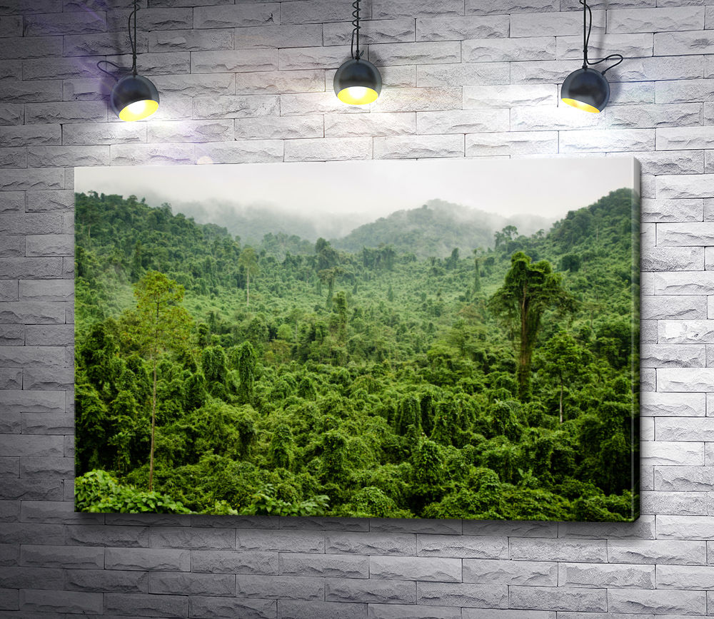 """Картина """"Непроходимые джунгли в горах"""""""