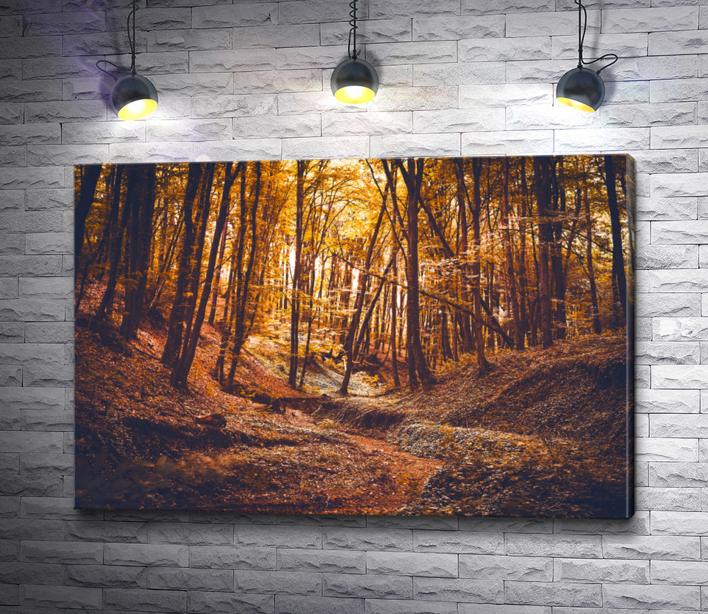 """Картина """"Осенний лес в лучах заката"""""""