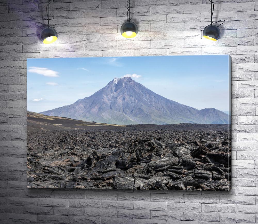 """Картина """"Вид на вулкан Большая Удина, Камчатка"""""""