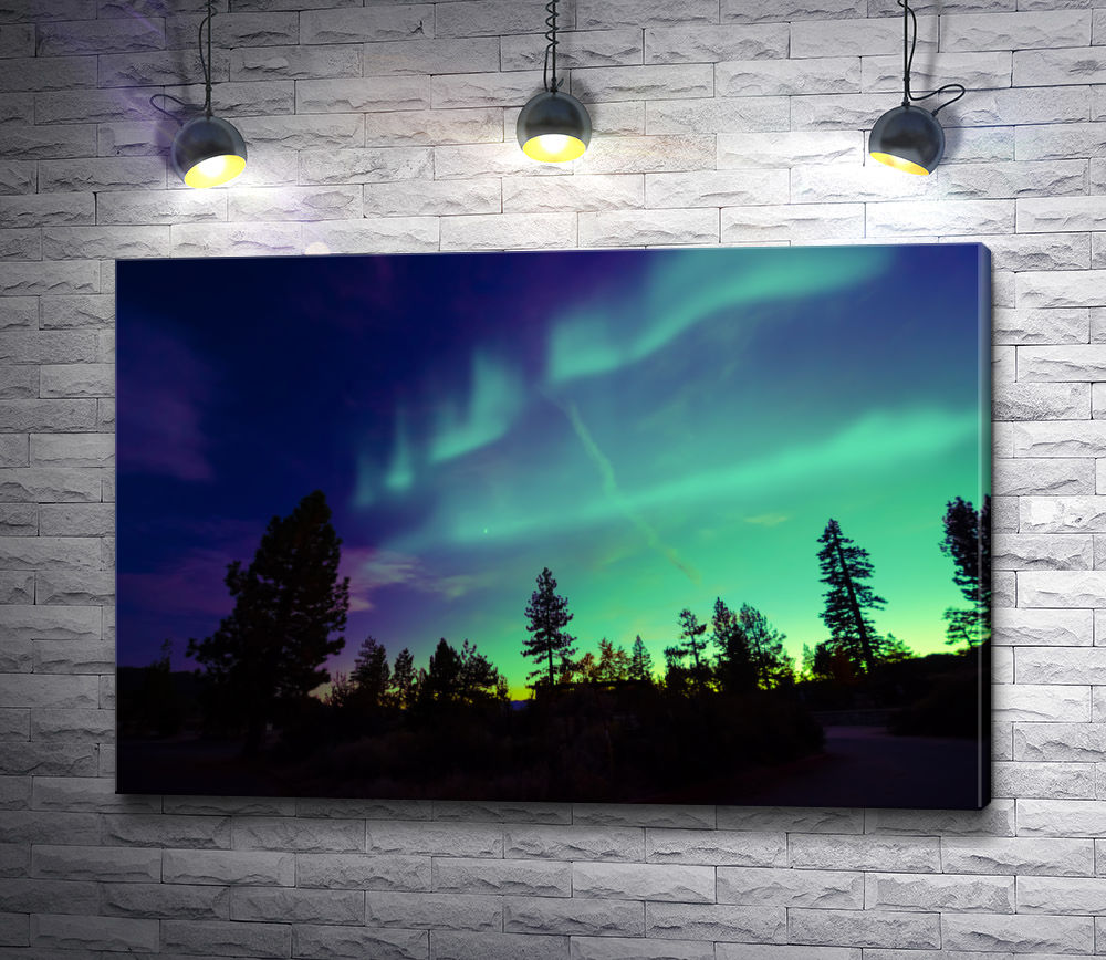 """Картина """"Северное сияние в ночном небе над лесной опушкой"""""""