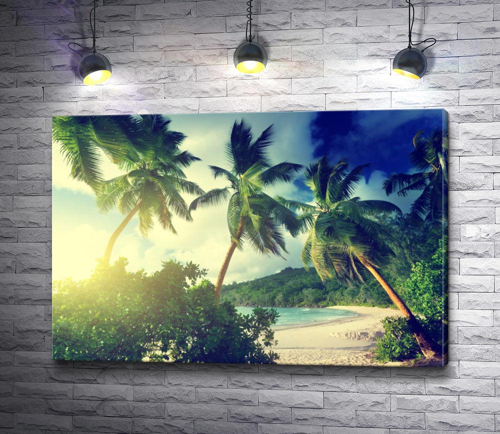 """Картина """"Пальмы в лучах солнца на тропическом берегу"""""""