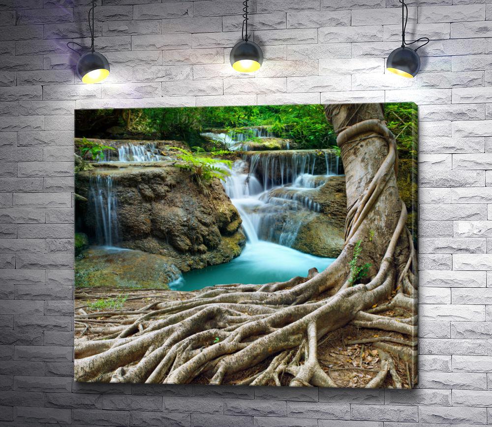 "Картина ""Каскад водопадов среди деревьев """