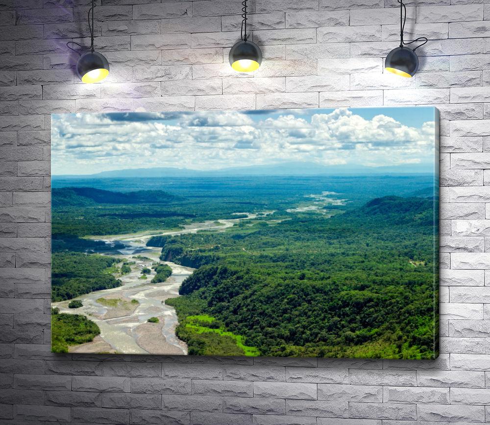 """Картина """"Река в тропических лесах Амазонии"""""""