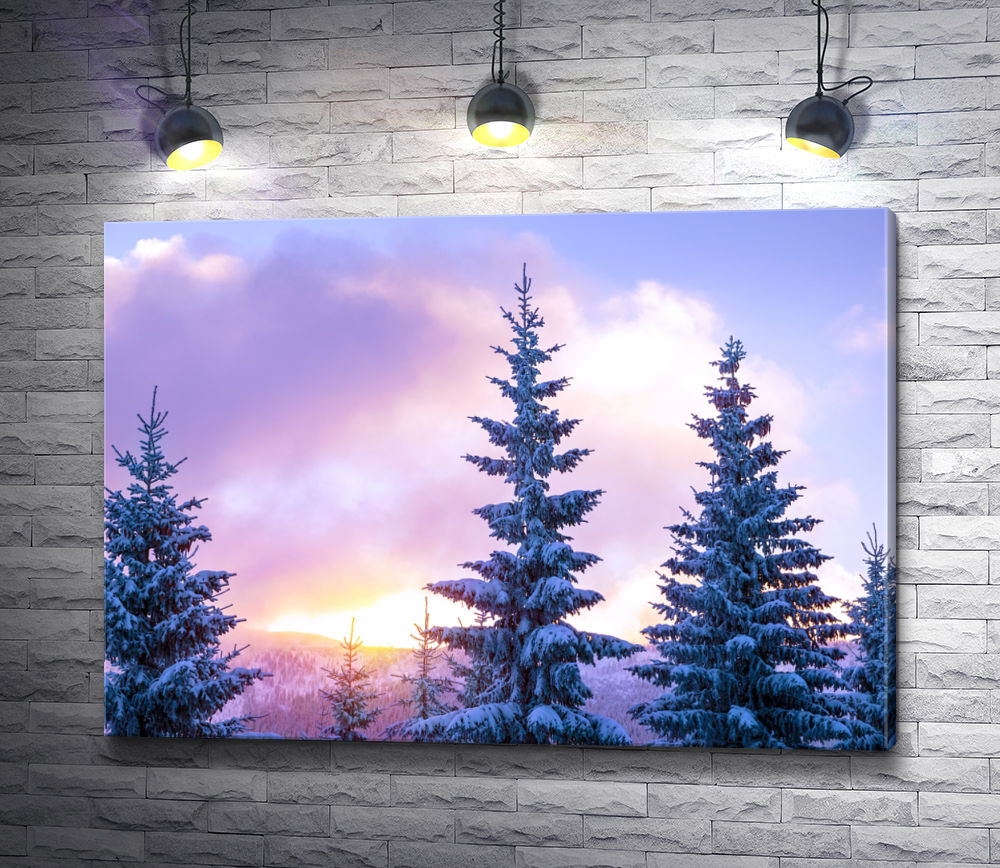 "Картина ""Верхушки елей во время зимнего заката"""