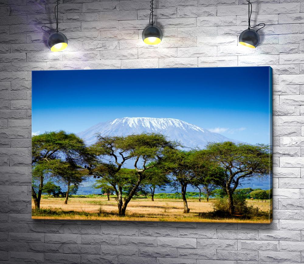 """Картина """"Африканские джунгли на фоне снежной горы"""""""