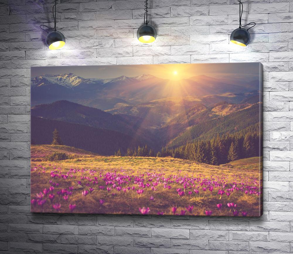 """Картина """"Восход над горной равниной"""""""