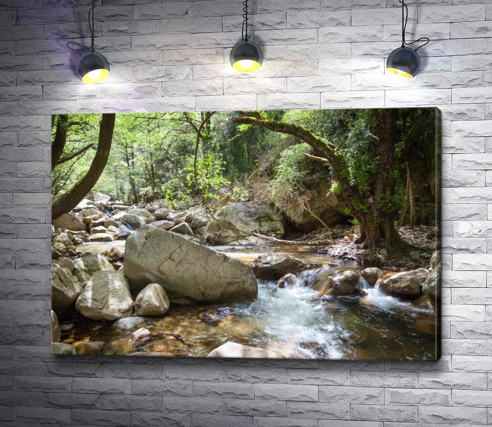 """Картина """"Река и камни в лесной чаще"""""""