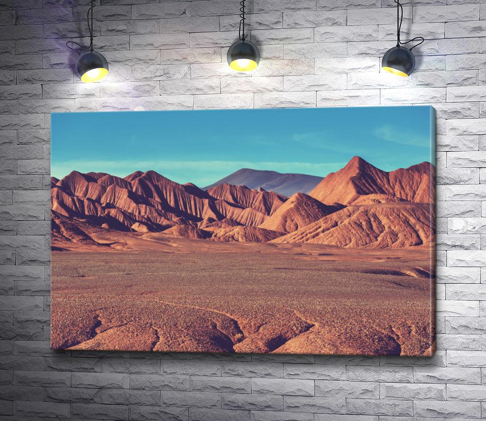 """Картина """"Горное плато Ла-Пуна. Северная Аргентина"""""""