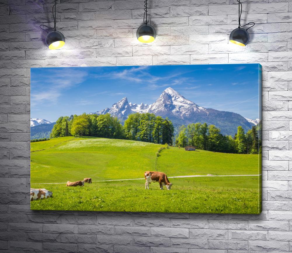"""Картина """"Пасущиеся коровы на лугу в Швейцарских Альпах"""""""