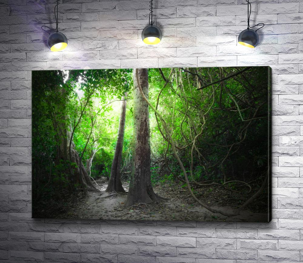 """Картина """"Деревья в непроходимых тропических джунглях"""""""