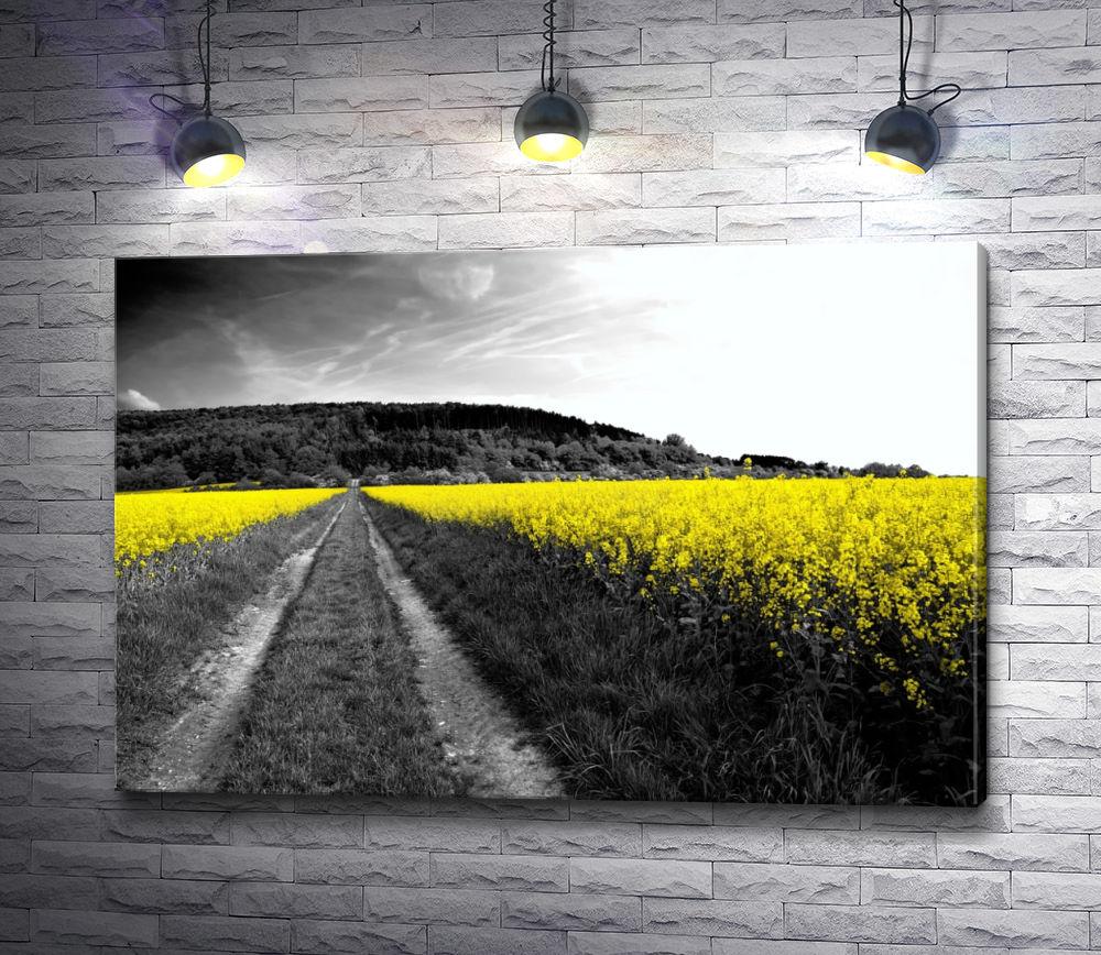 """Картина """"Поле с желтыми цветами в черно-белой обработке"""""""