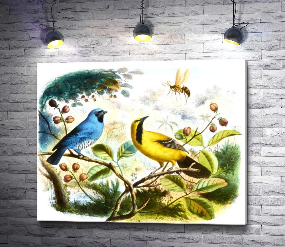 """Картина """"Маленькие цветные птички на белом фоне """""""