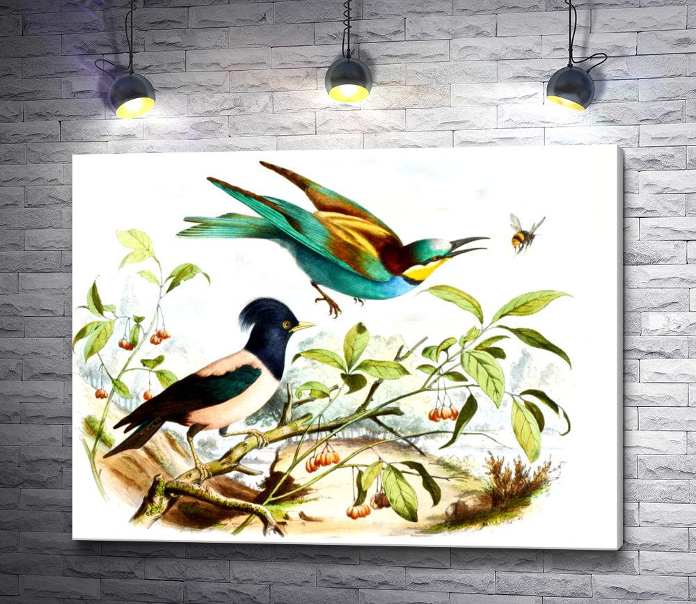 """Картина """"Красочные птицы на ветке"""""""