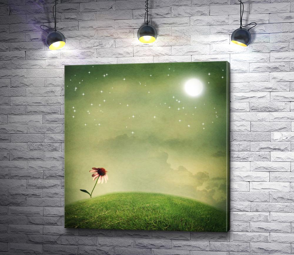 """Картина """"Ромашка под звездным небом """""""