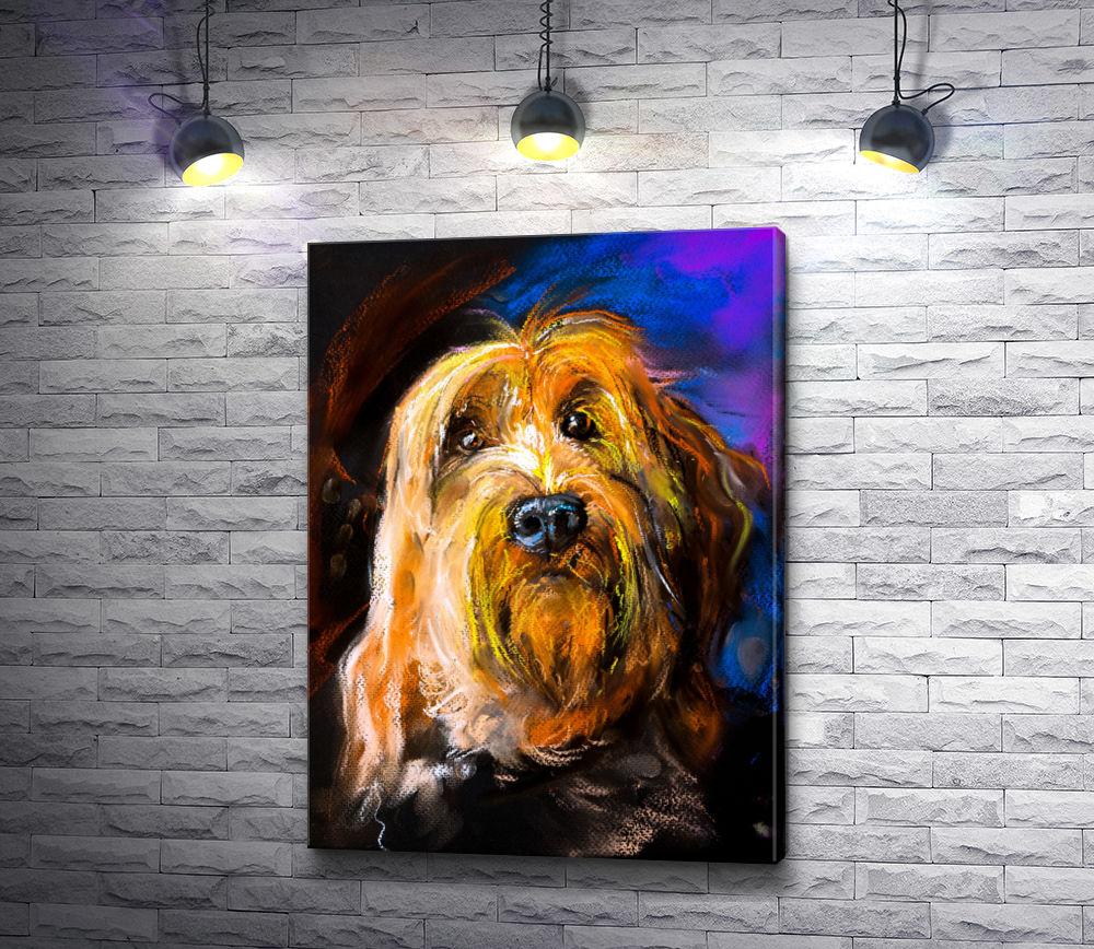 """Картина """"Коричневый пушистый пес"""""""