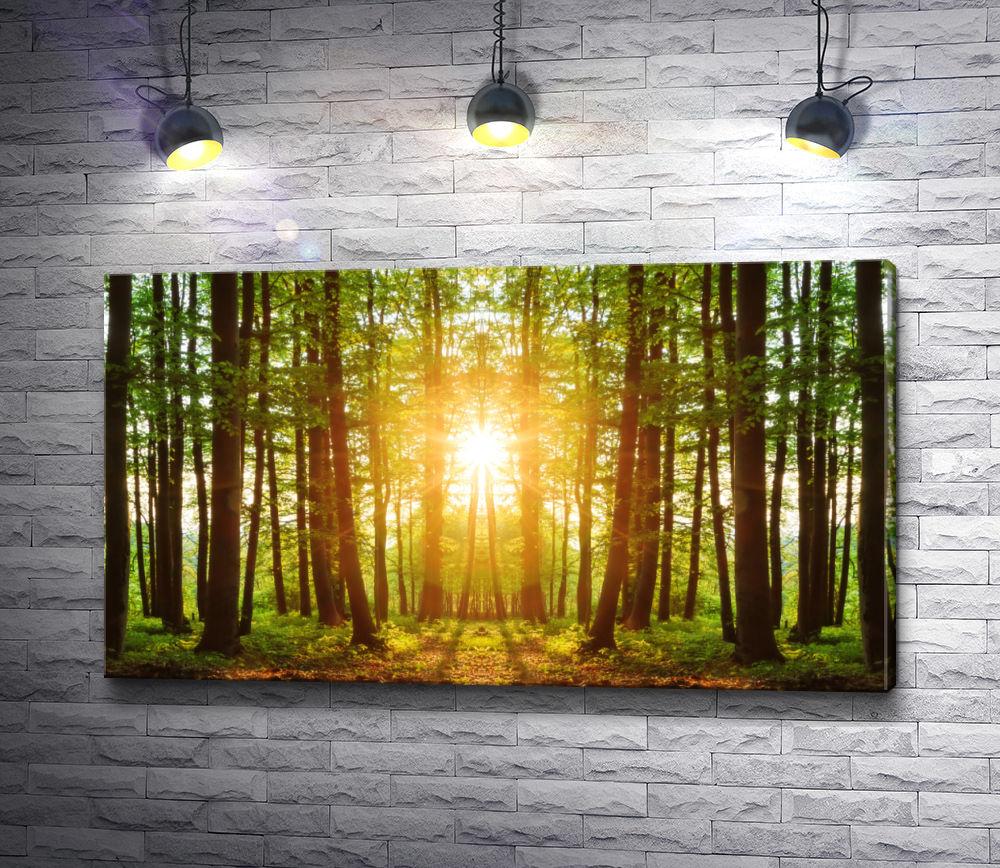 """Картина """"Солнце пробивается сквозь лес"""""""