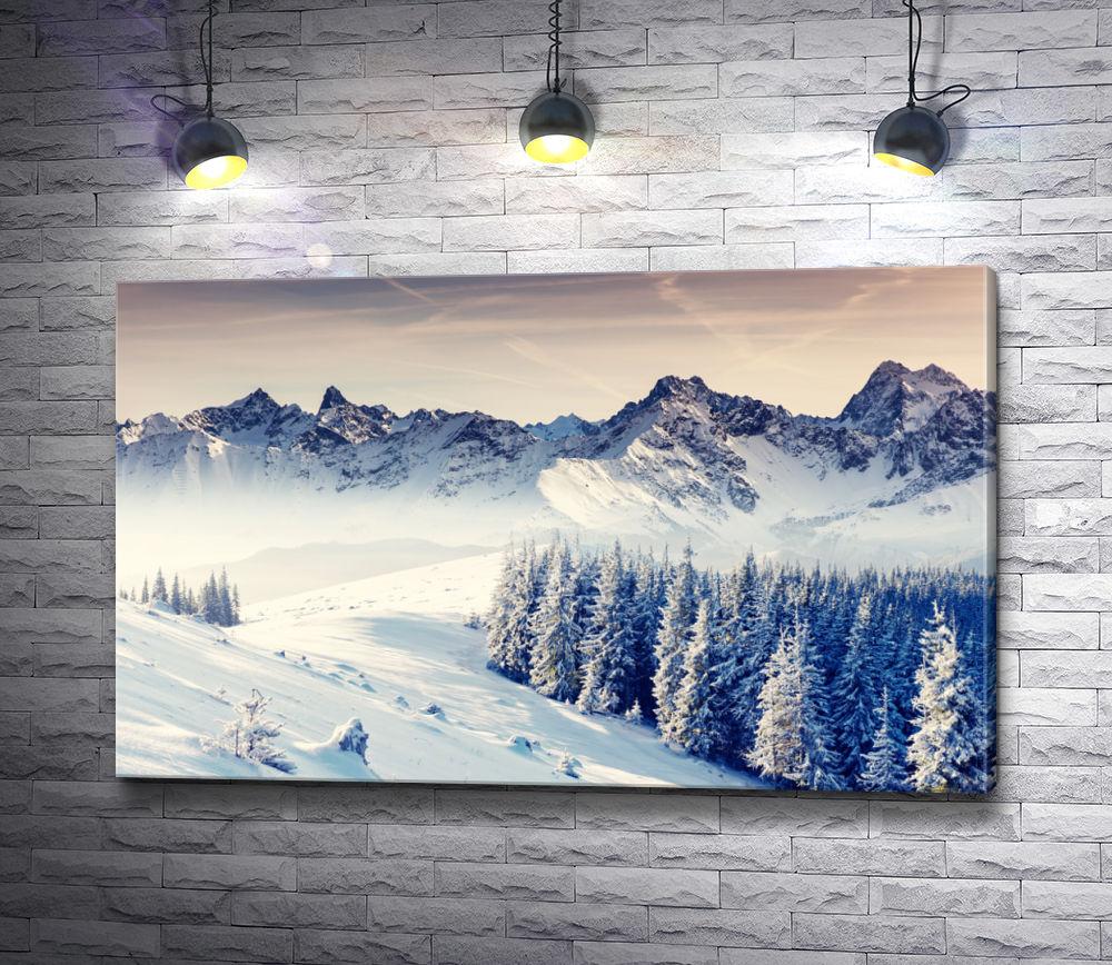"Картина ""Лес в заснеженных горах"""