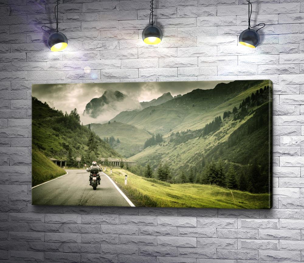 """Картина """"Байкер в окружении красивых гор"""""""