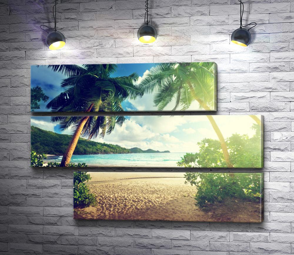 """Картина """"Пальмы, море, солнце, пляж"""" из 3-х частей (модуль №15)"""