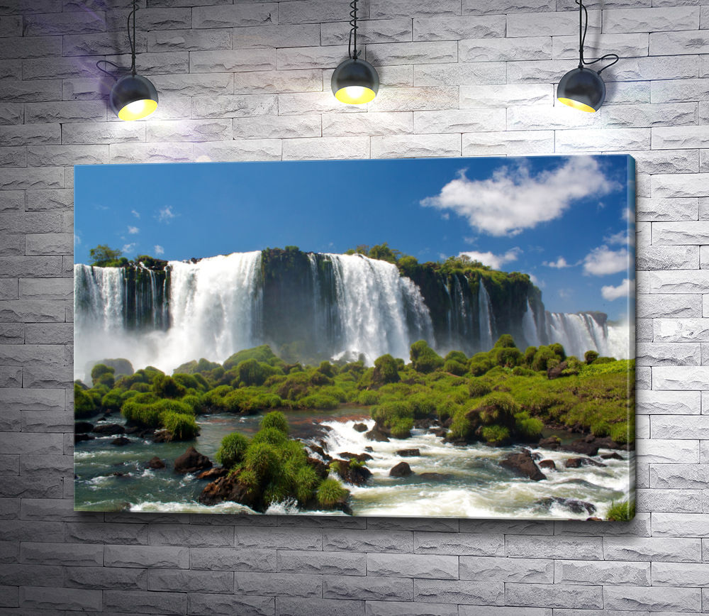 """Картина """"Водопады Игуасу"""""""