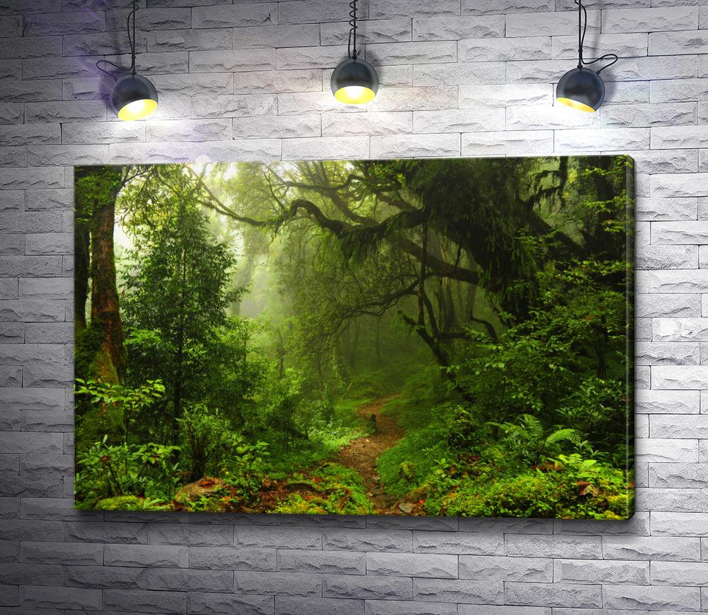 """Картина """"Дремучий лес"""""""
