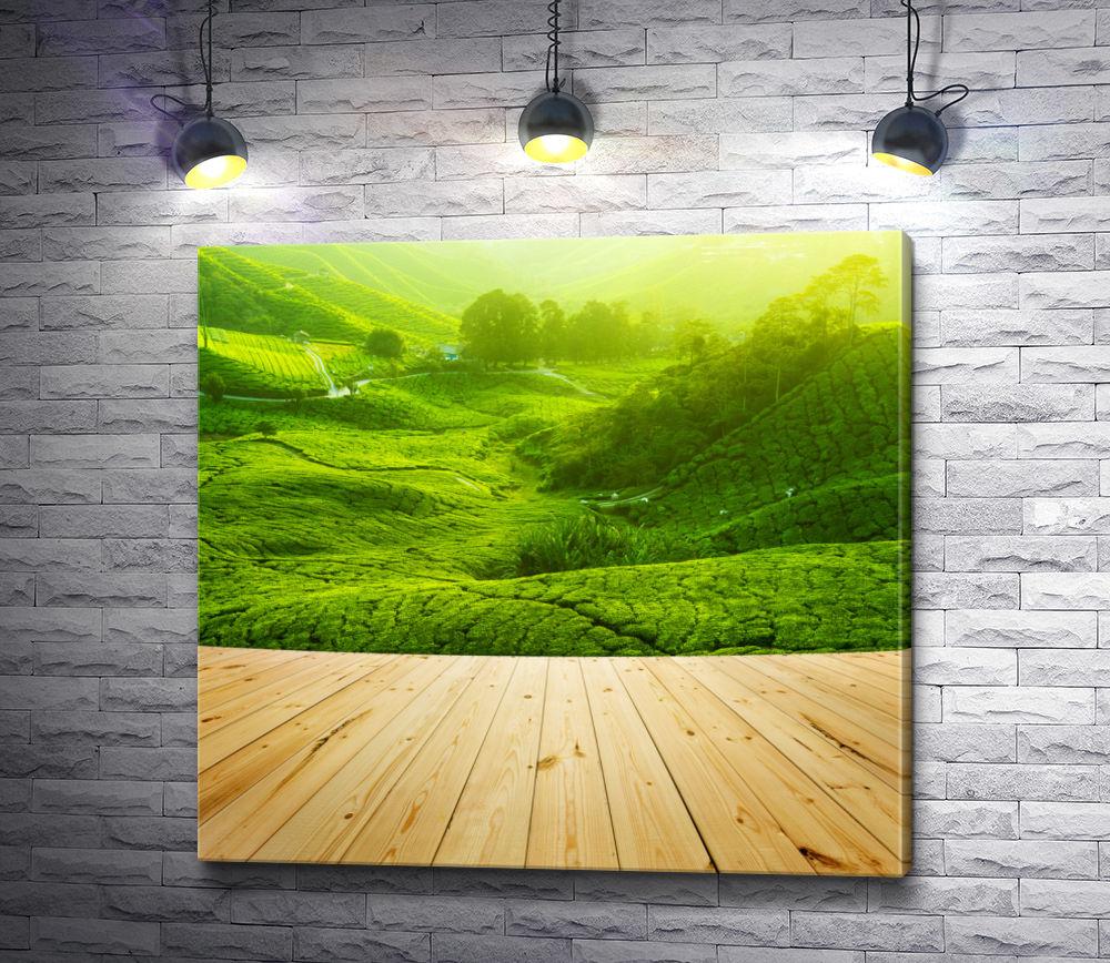 """Картина """"Солнечная зелень"""""""
