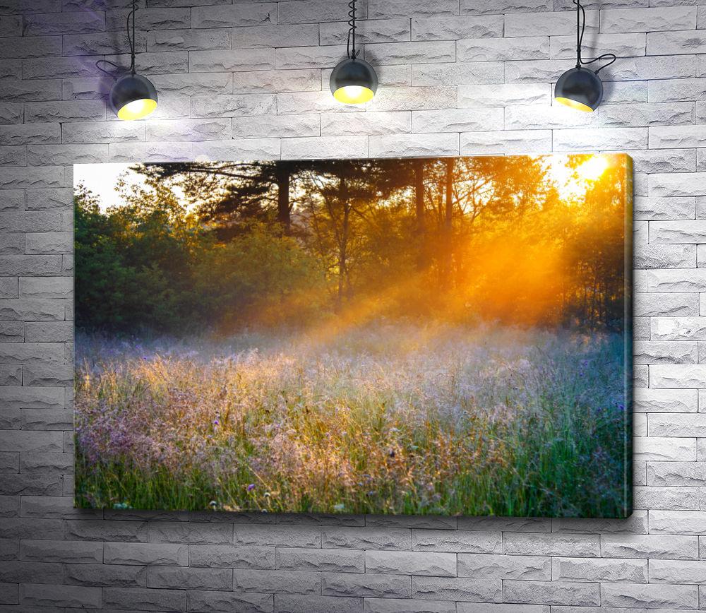 """Картина """"Лучик солнца греет цветы"""""""