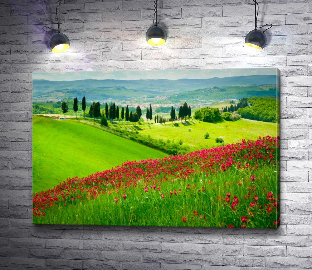 """Картина """"Цветы на склоне Тосканы"""""""