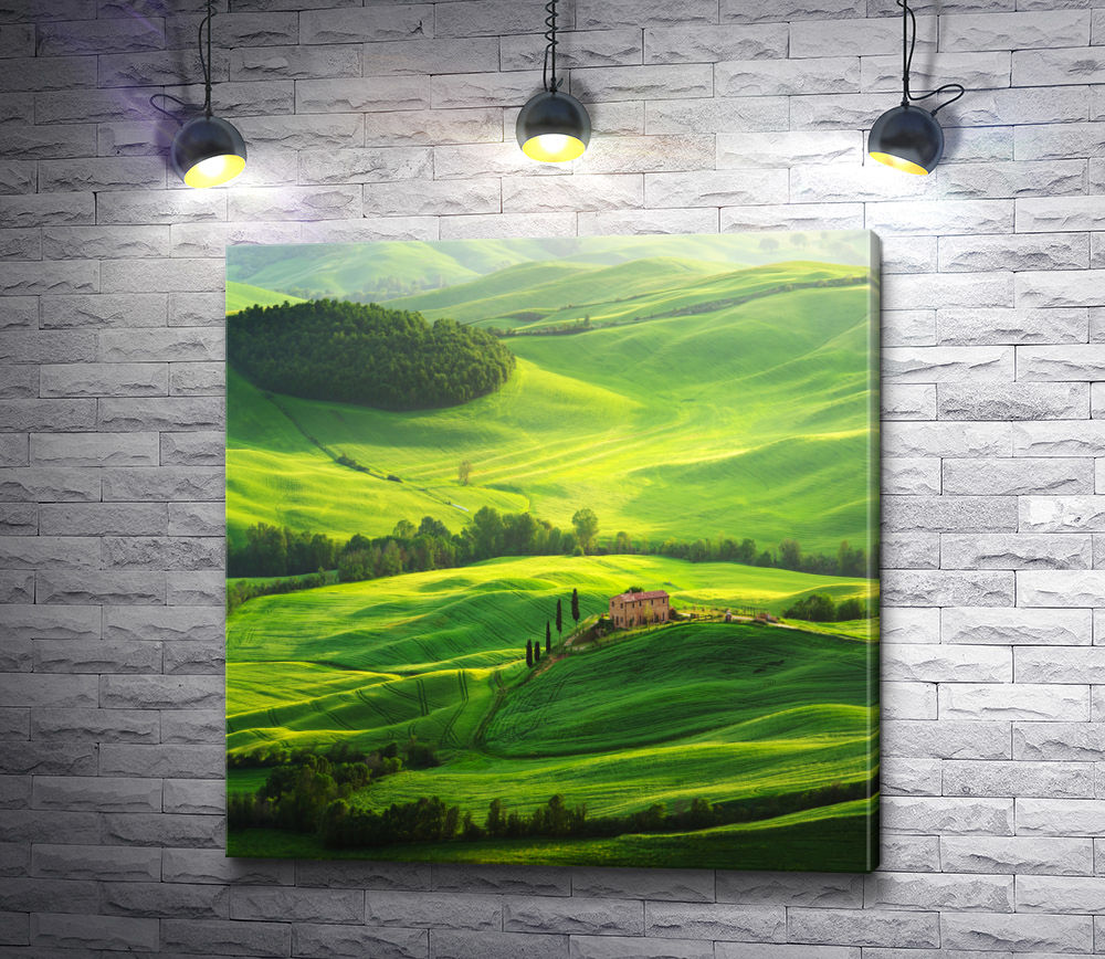 """Картина """"Дом на зеленом холме"""""""