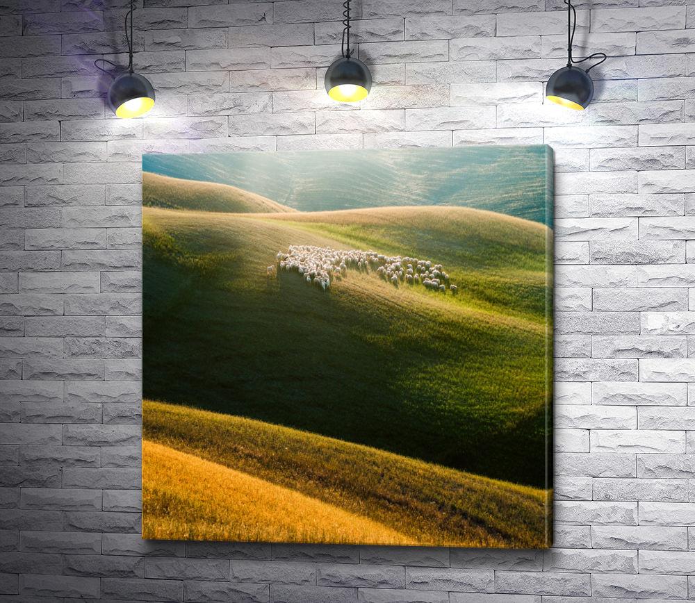 "Картина ""Овечки и красота природы"""