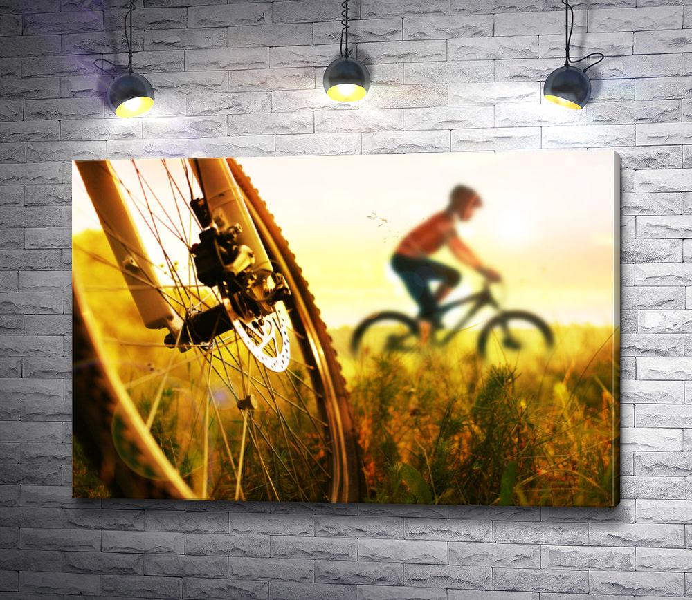 "Картина ""Приключения на велосипедах"""