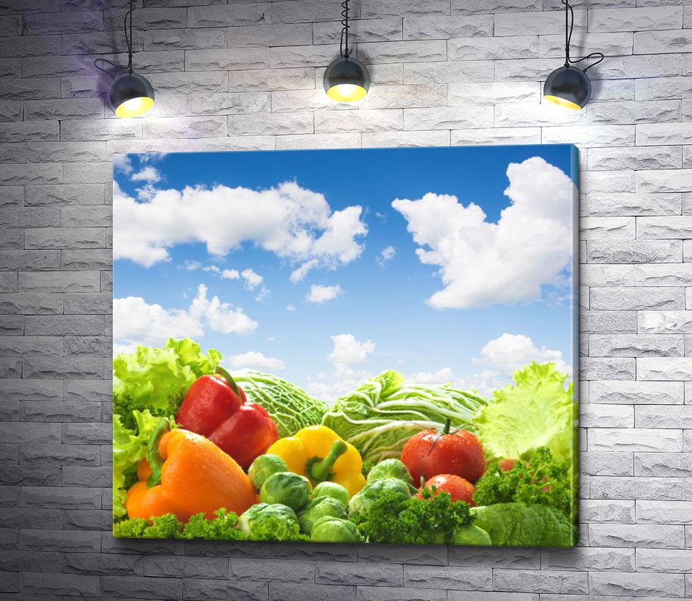 """Картина """"Сочные овощи """""""