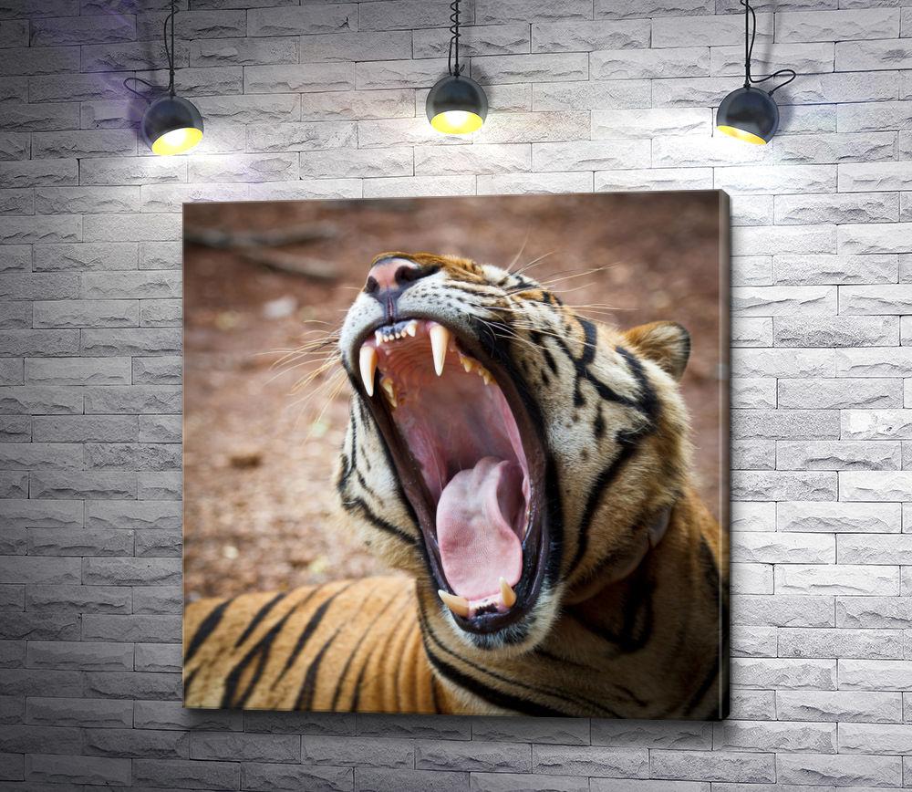 """Картина """"Зубы тигра"""""""