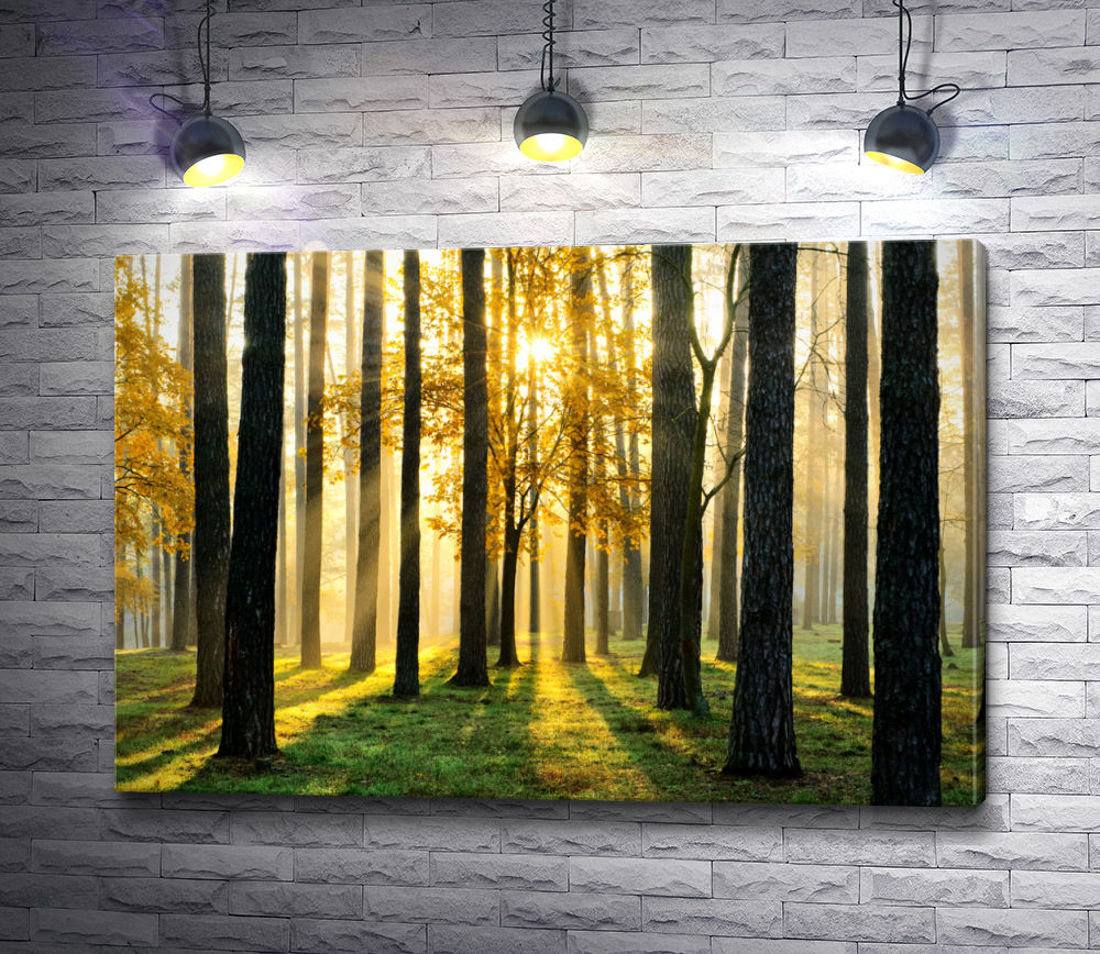"""Картина """"Лучи солнца освещают лес"""""""