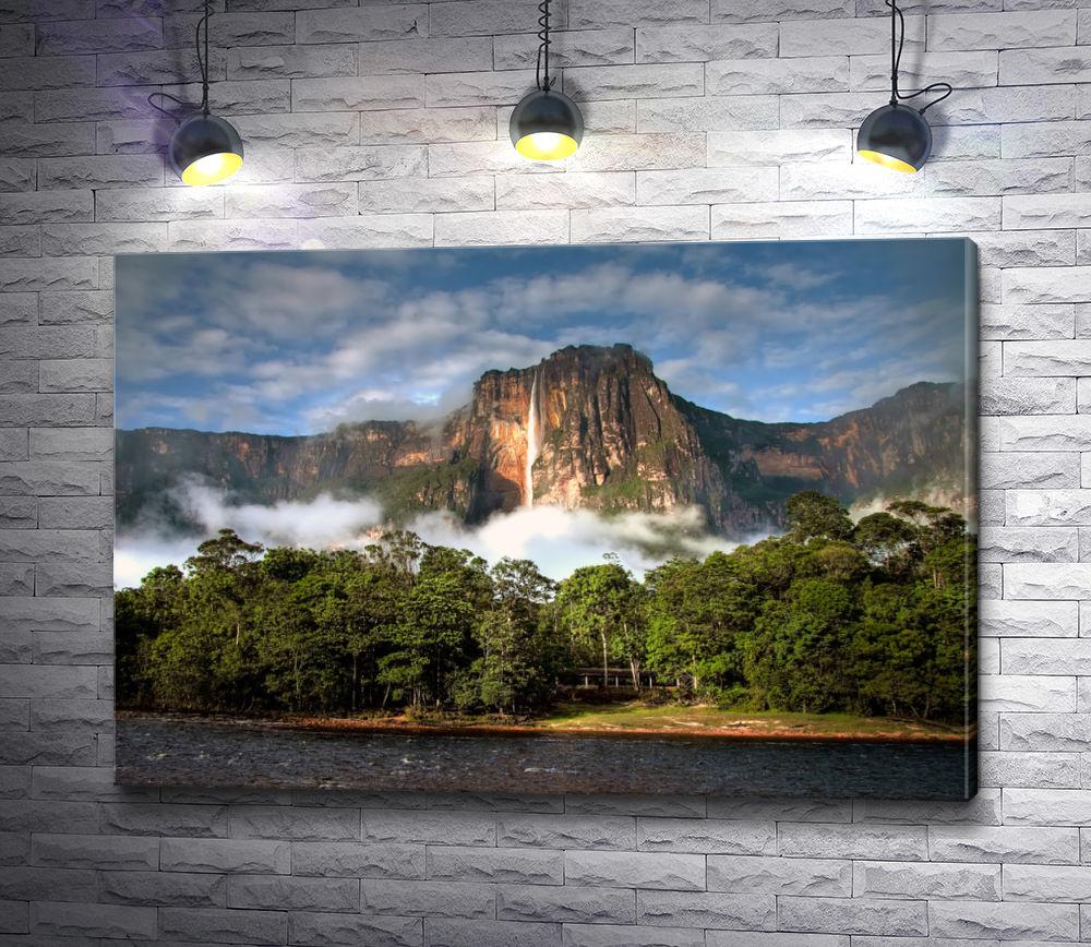 """Картина """"Замечательная Венесуэла """""""