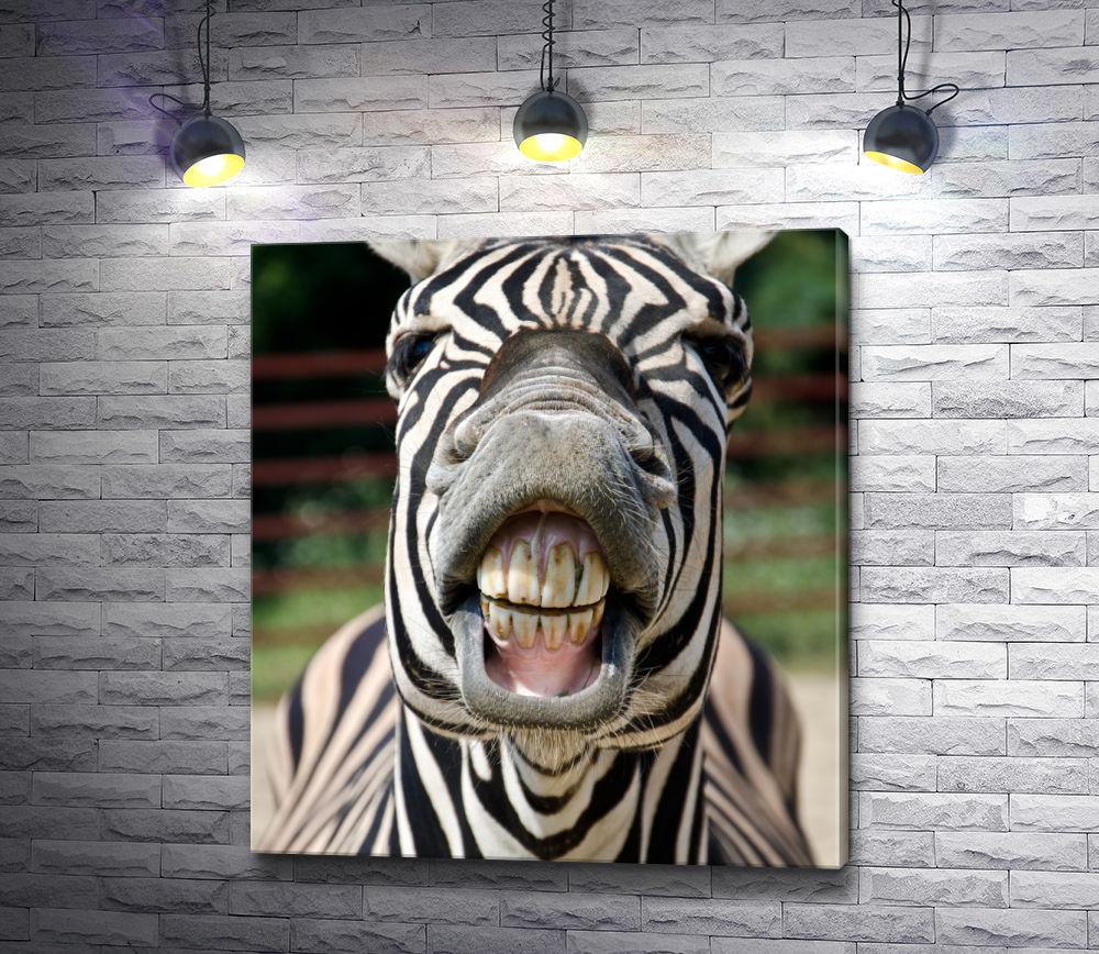 """Картина """"Улыбка зебры"""""""