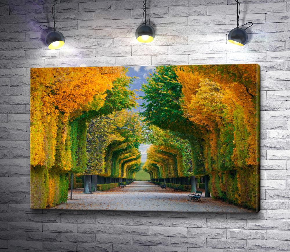 """Картина """"Арка из деревьев"""""""