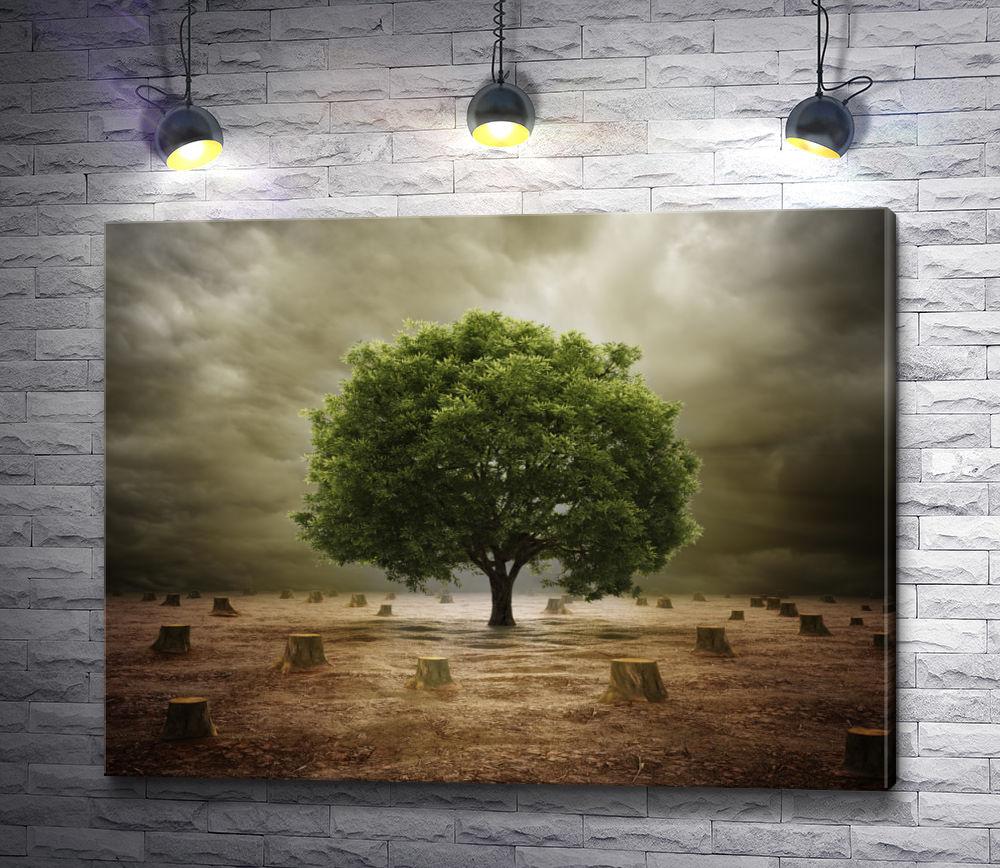 "Картина ""Дерево и пеньки"""