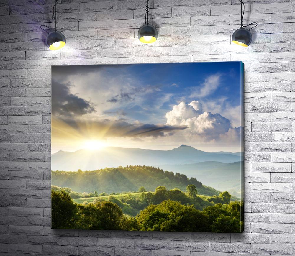 """Картина """"Солнце освещает лес"""""""