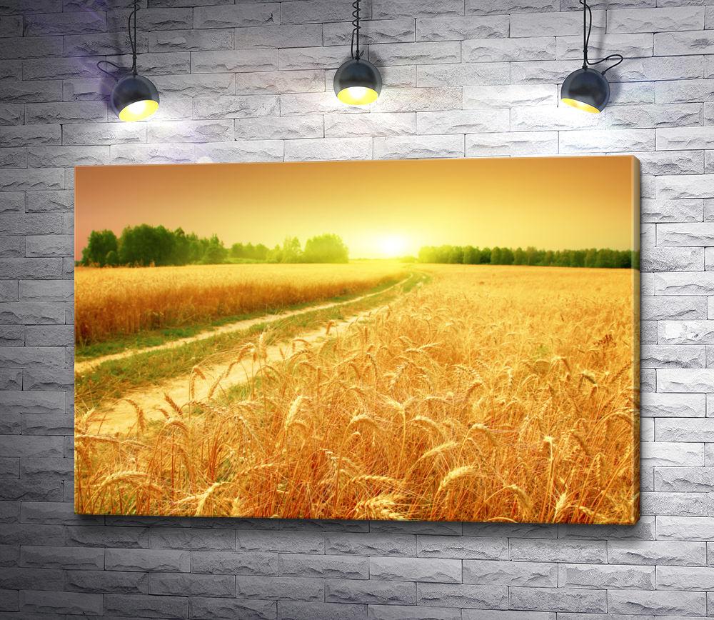 """Картина """"Дорога и пшеничное поле"""""""